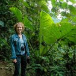 Welcome to the Jungle: the Mindo Cloud Forest, Ecuador
