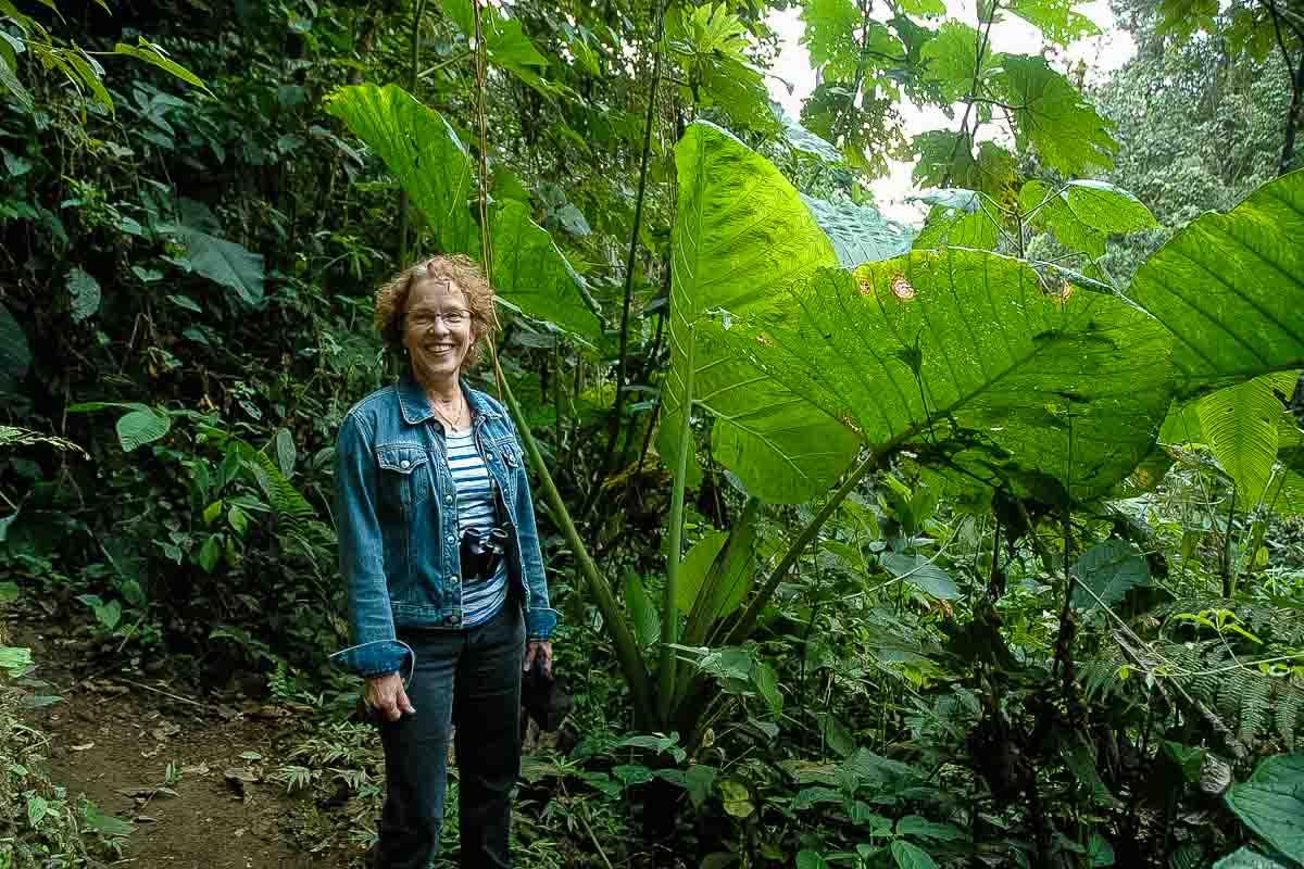 Ecuador Milpe mindo cloud forest Kris