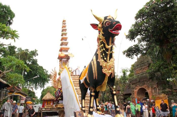 bali cremation ceremony bull