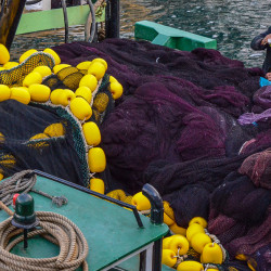 fishermanbosphorus