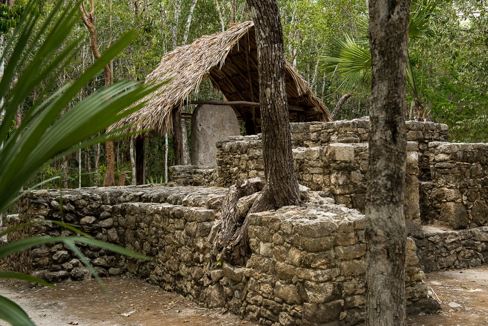 Covered stele Coba Yucatan