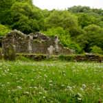 Churchyard, Glendalough, Wicklow, Ireland