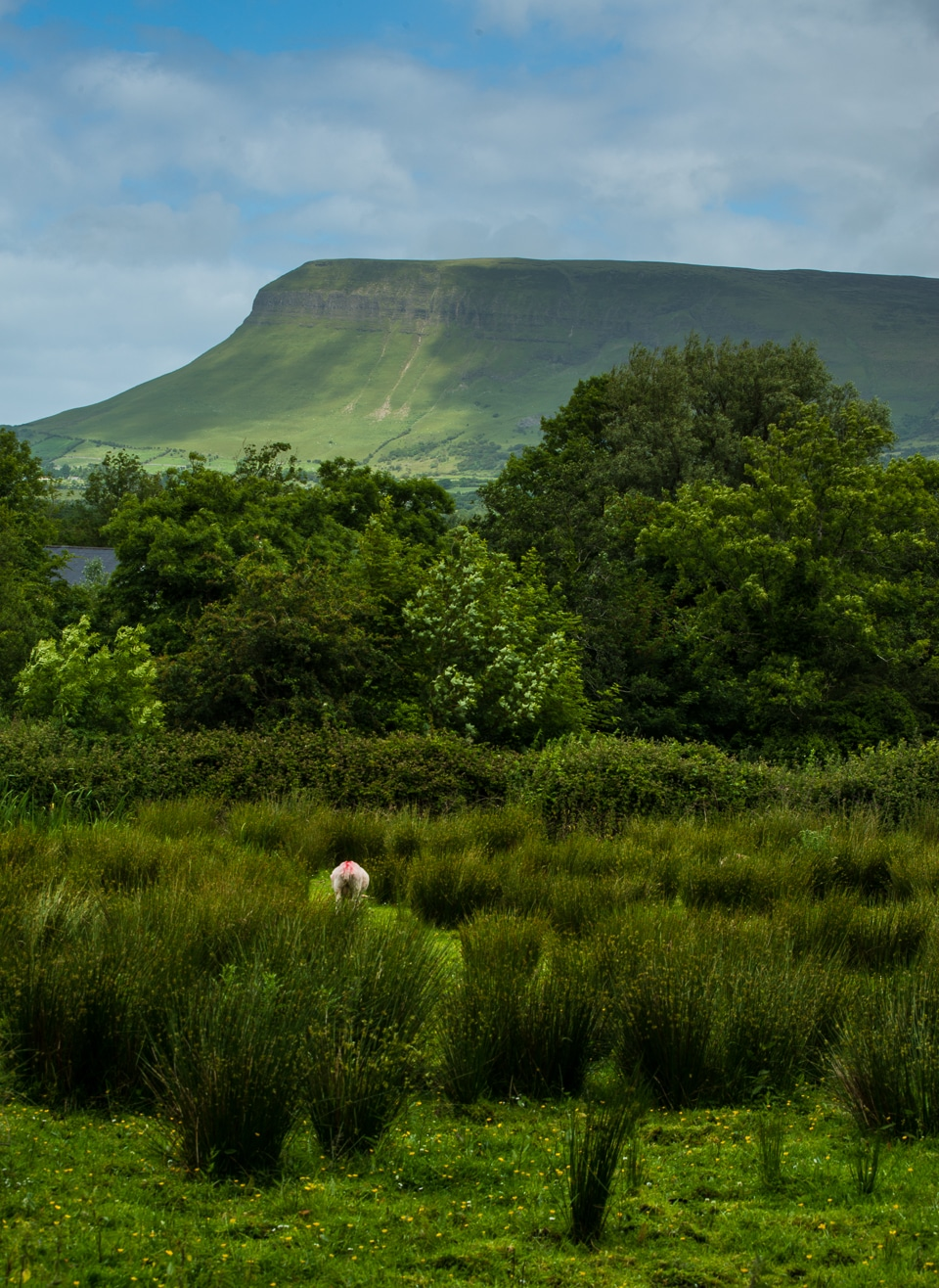 ben bulben sligo ireland 3