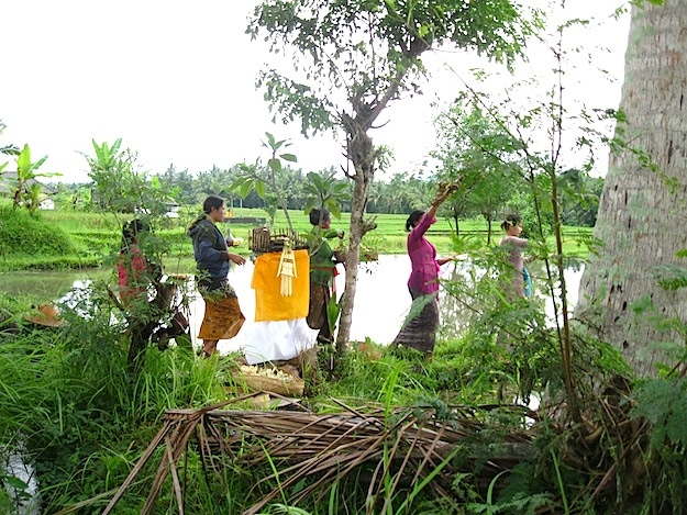 Rice temple ceremony, blessing the water