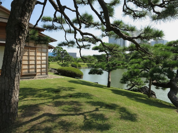 Hama-rikyu Gardens of a Shogun family in Edo era works landscapes along tidal ponds against the modern backdrop