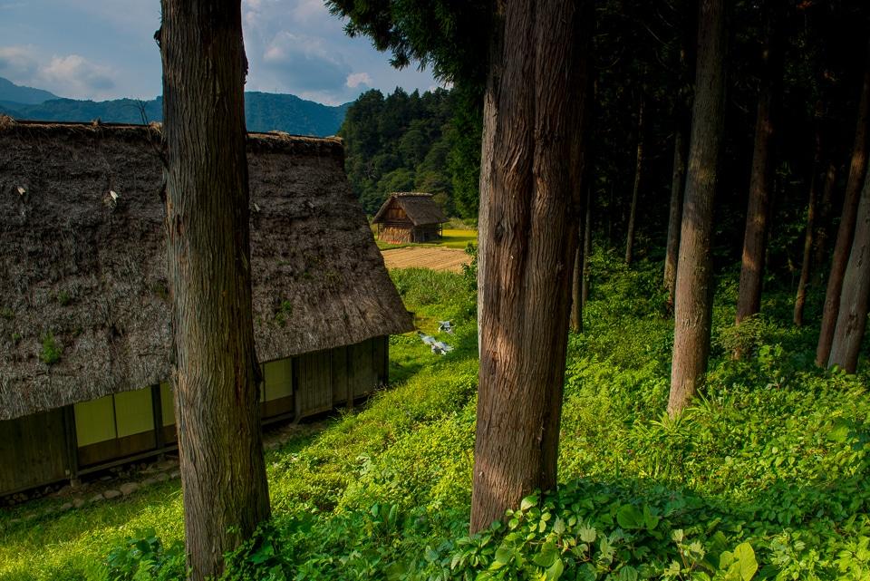 rice storage huts Shirakowa-go