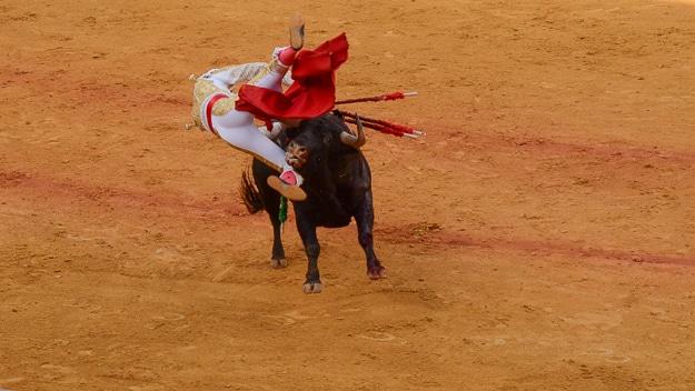 Sevilla bull flips torero