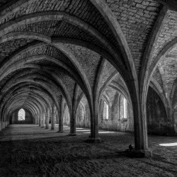 fountains abbey cellarium england