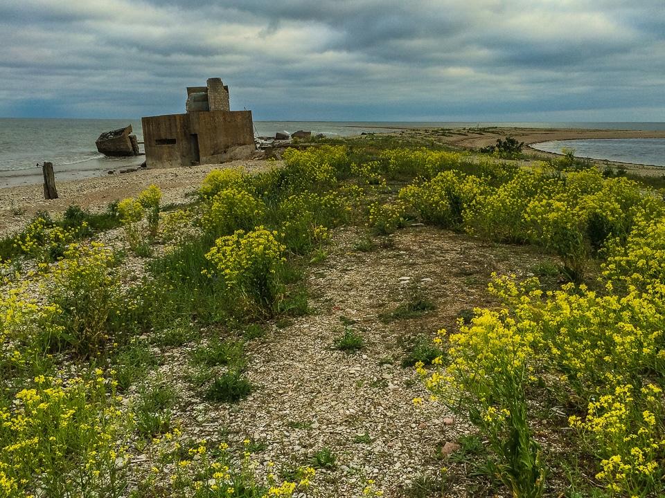 german coastal bunkers saaremaa