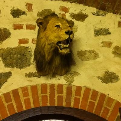 trakai castle lion