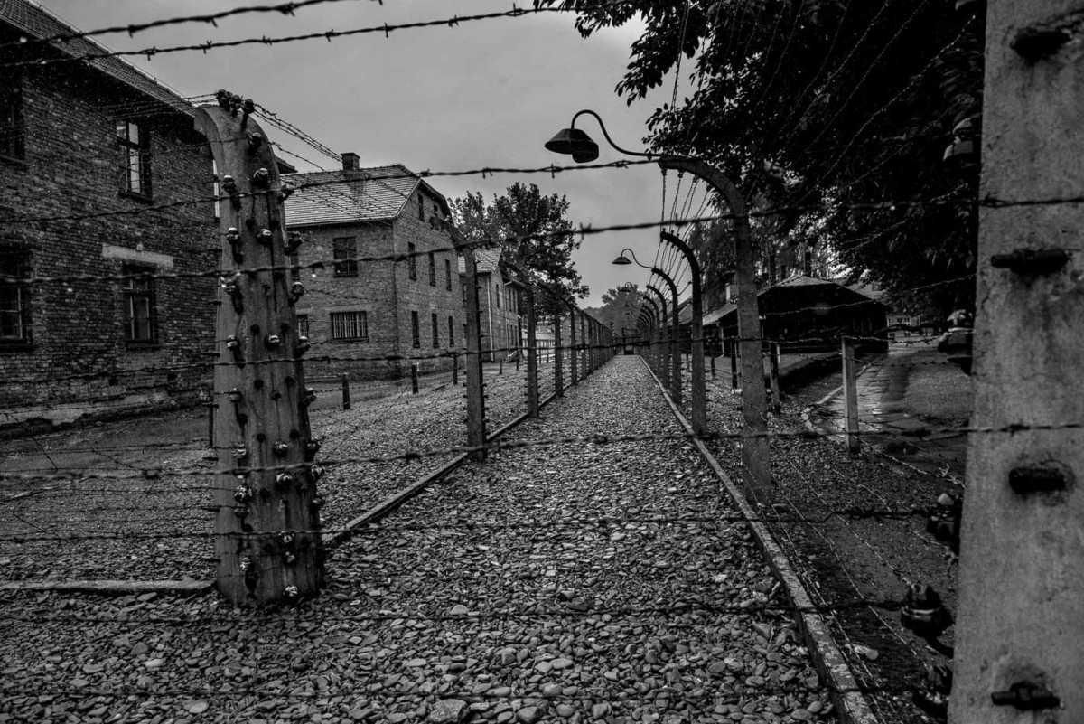 auschwitz fence line
