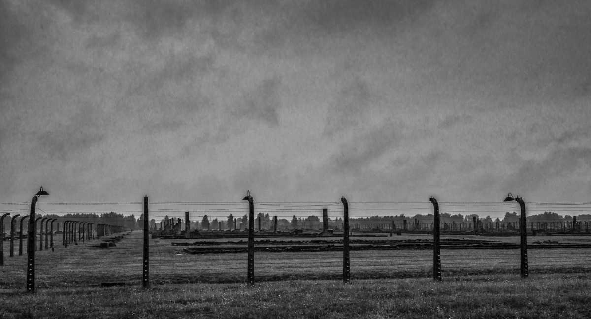 birkinau fence line