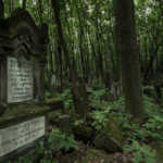 The Jewish Cemetery, Warsaw, Poland