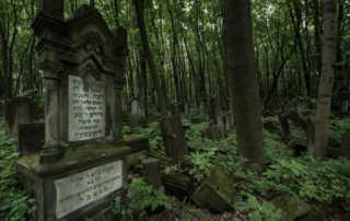 jewish cemetery warsaw