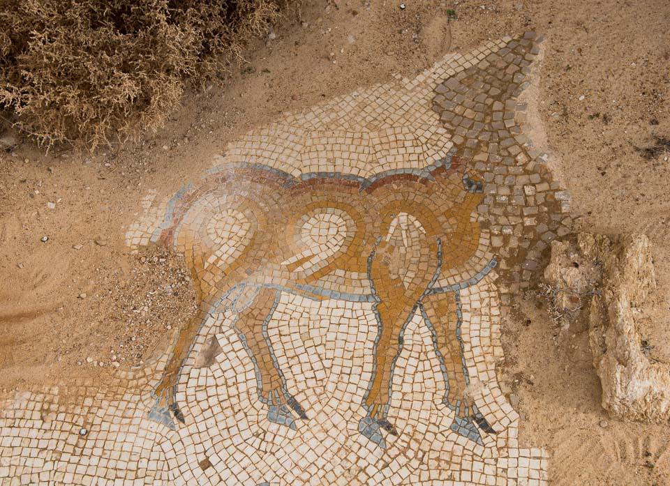 headless deer mosaic um er rasas jordan
