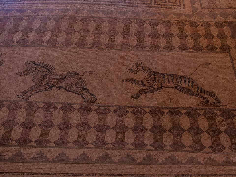 The Mosaics of Ancient Paphos, Cyprus - Travel Past 50
