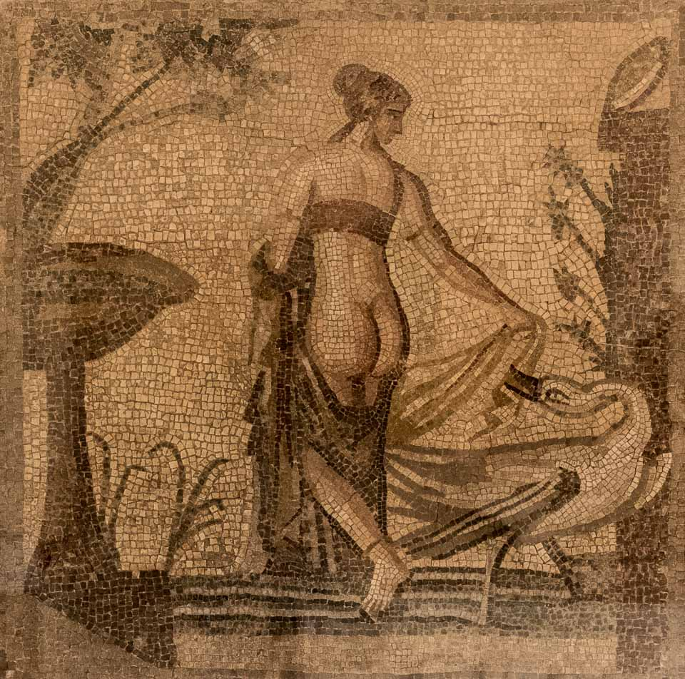 orig mosaic leda aphrodite temple paphos cyprus
