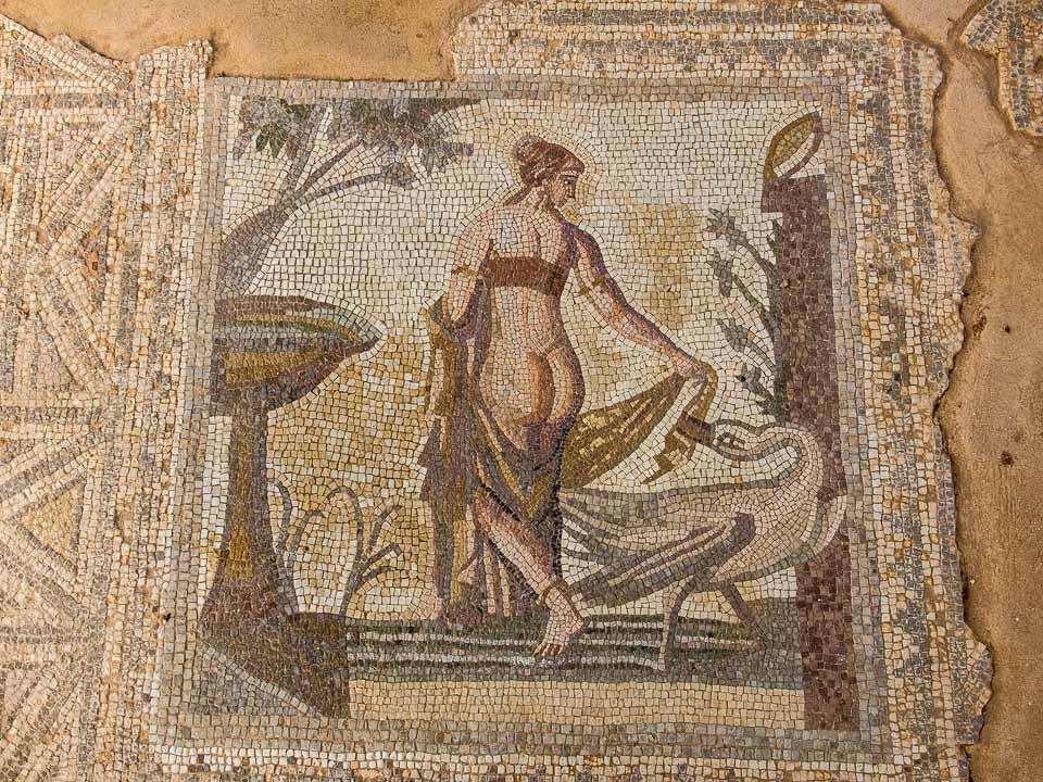 repro mosaic leda aphrodite temple paphos cyprus