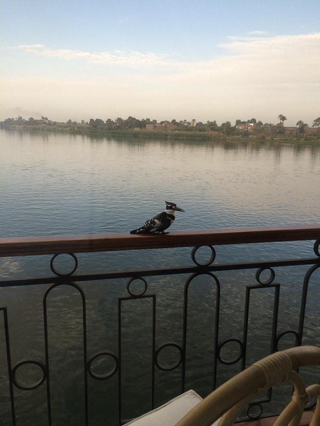 Sonesta Nile River Cruise Egypt
