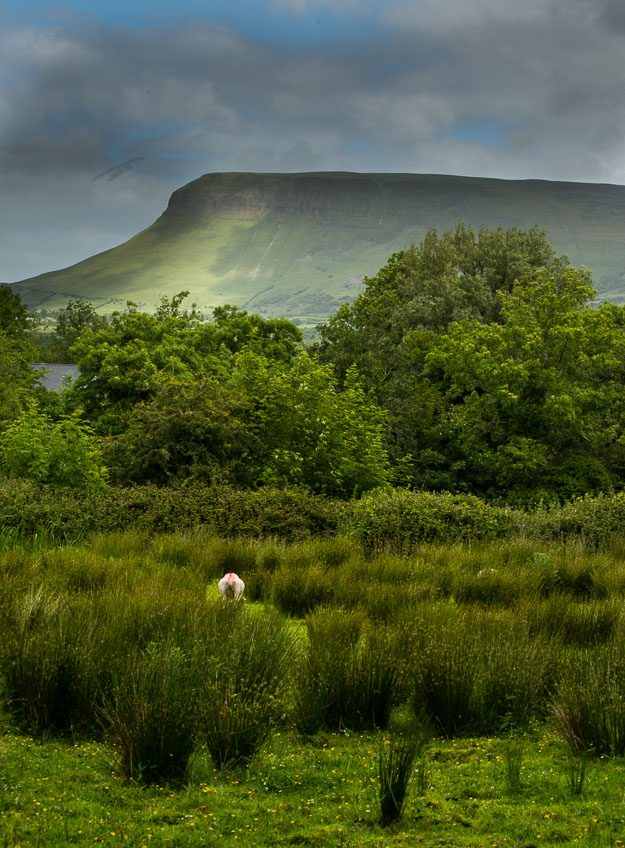 view of Ben Bulben from Yeats grave