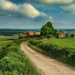 burgundy farm 1