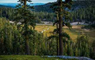 Meadow Lassen Volcanic National Park