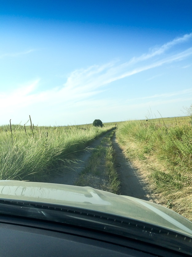 Road trip, sans road. Driving to Sheep Mountain Table in southern unit of Badlands National Park, South Dakota.