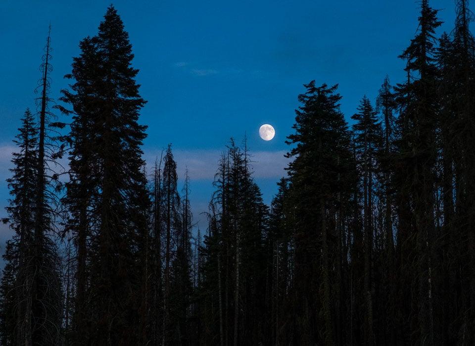 lassen national park moonrise