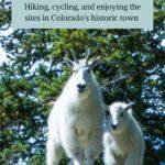 Breckenridge adventures