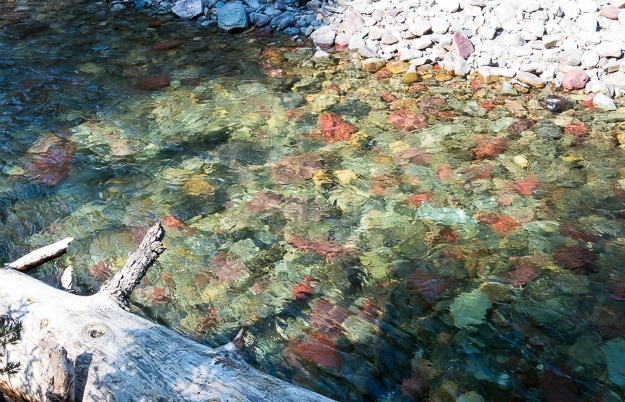 Though water is in short supply in the West, this stream in Glacier National Park is clear, cold, and shows off the mineral colors in the rocks.