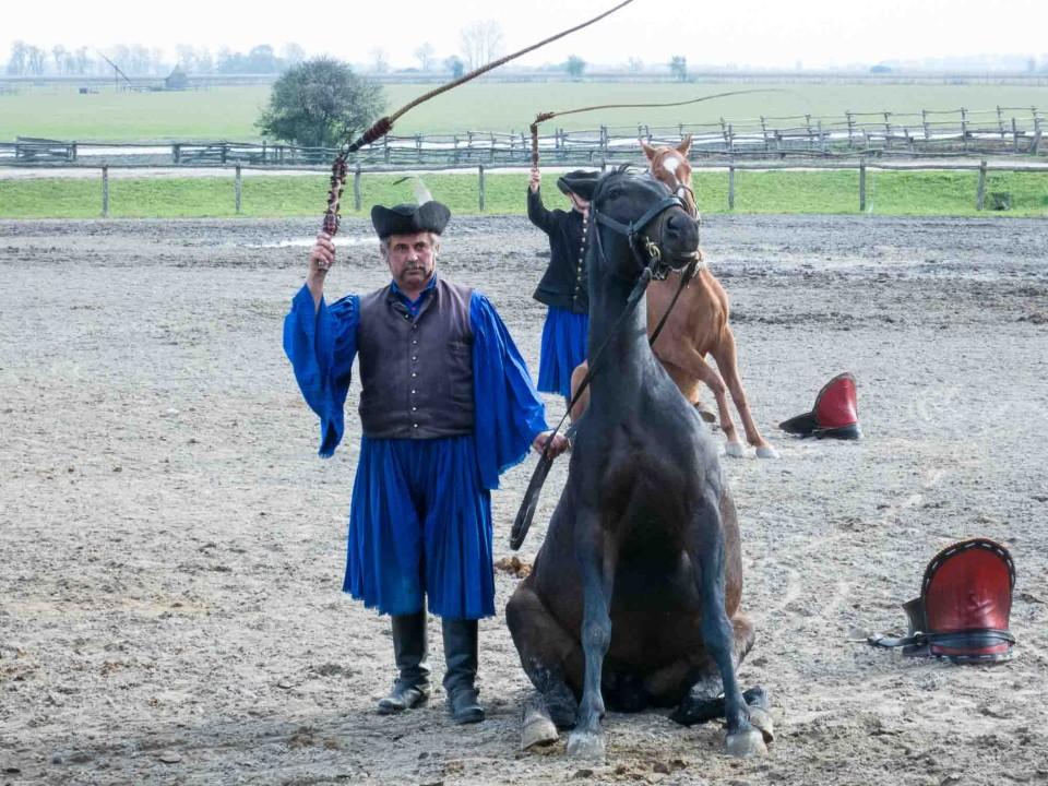 Hungarian Horsemanship Travel Past 50