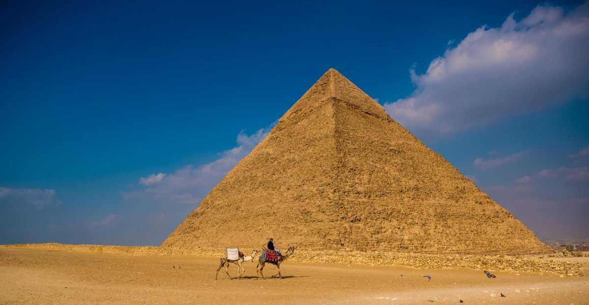 pyramid camel giza egypt