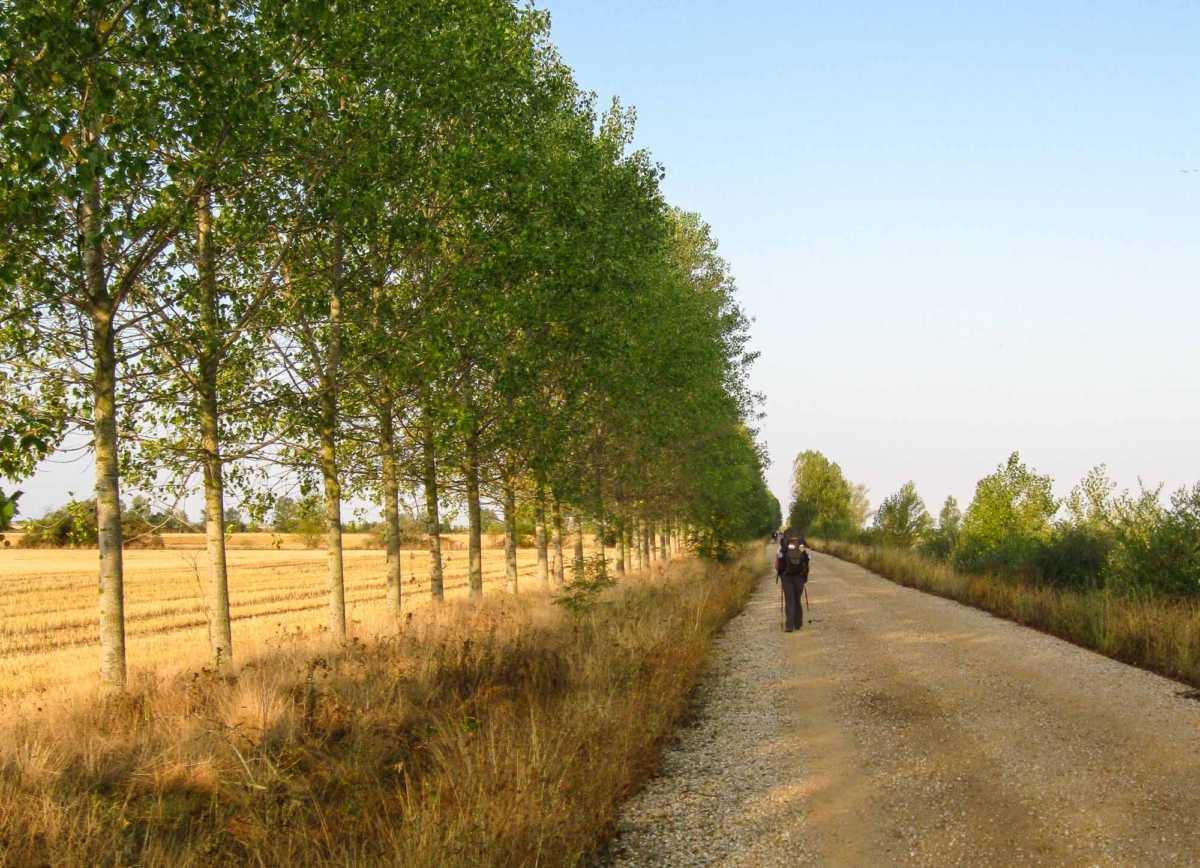 Walking Tour Camino de Santiago, Spain