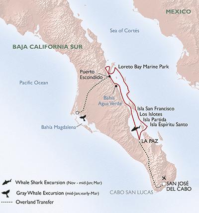 Un-Cruise Sea of Cortez