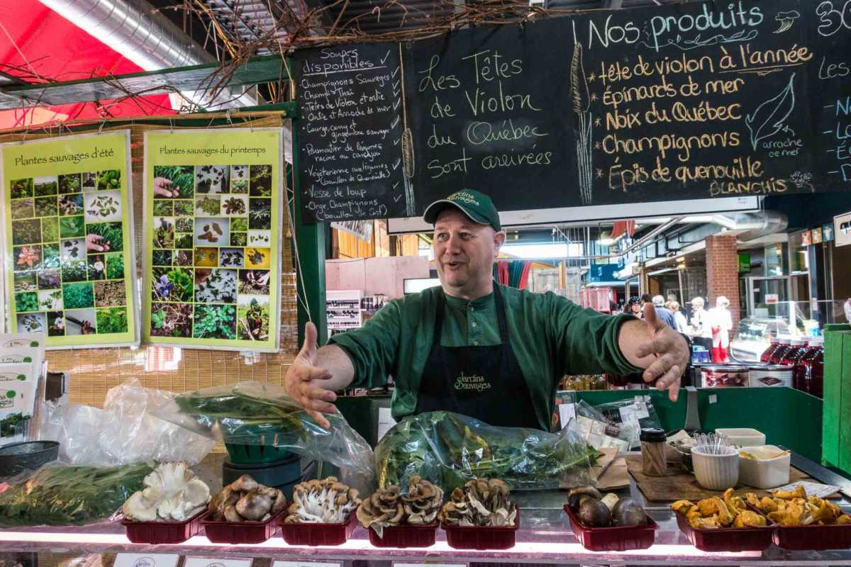 Context Travel Montreal forager marche jean talon montreal