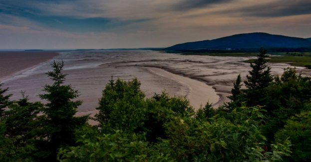 low tide bay of fundy new brunswick