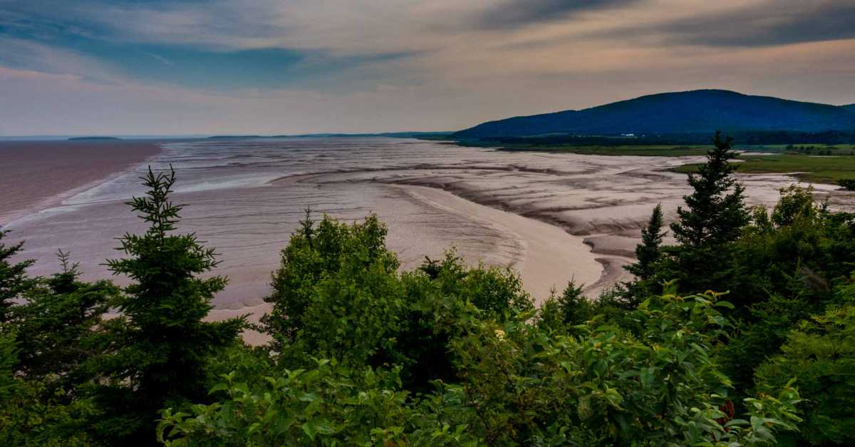 tidal flats bay fundy new brunswick