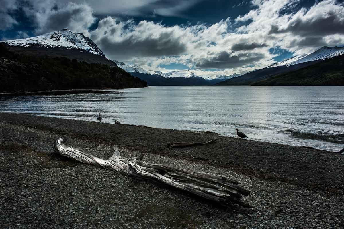 Argentina_Tierra del fuego beagle strait shore