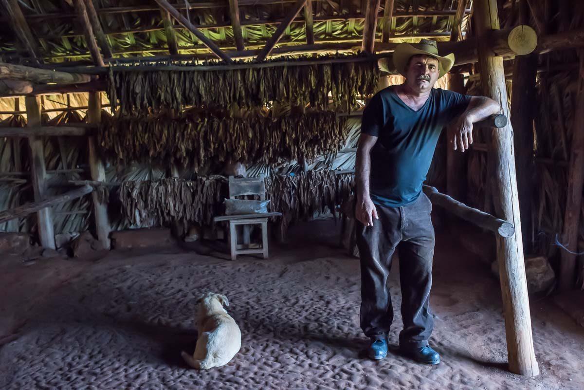 Cuba_pinar del rio_tobacco farmer