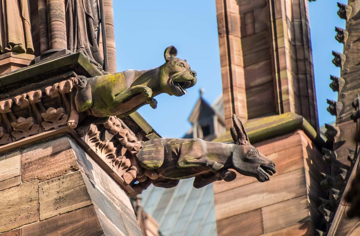 France_Strasbourg Cathedral gargoyle 2