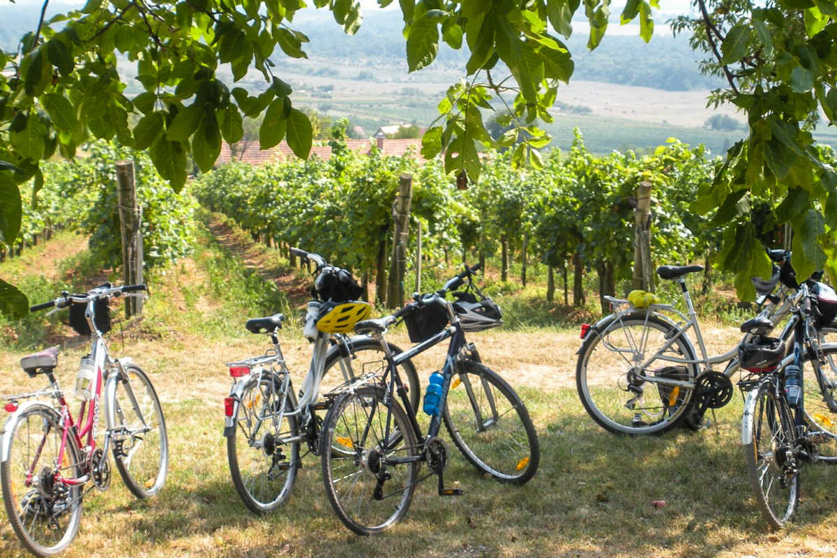 Planning Your First Europe Bike Tour - Travel Past 50