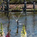 Brookgreen Garden pond