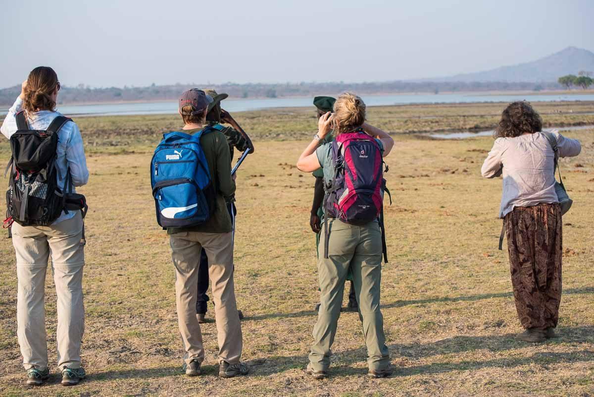 Malawi Vwaza spotting hippos