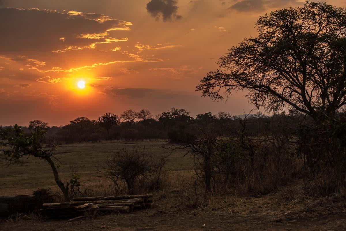 Malawi Vwaza sunset 4