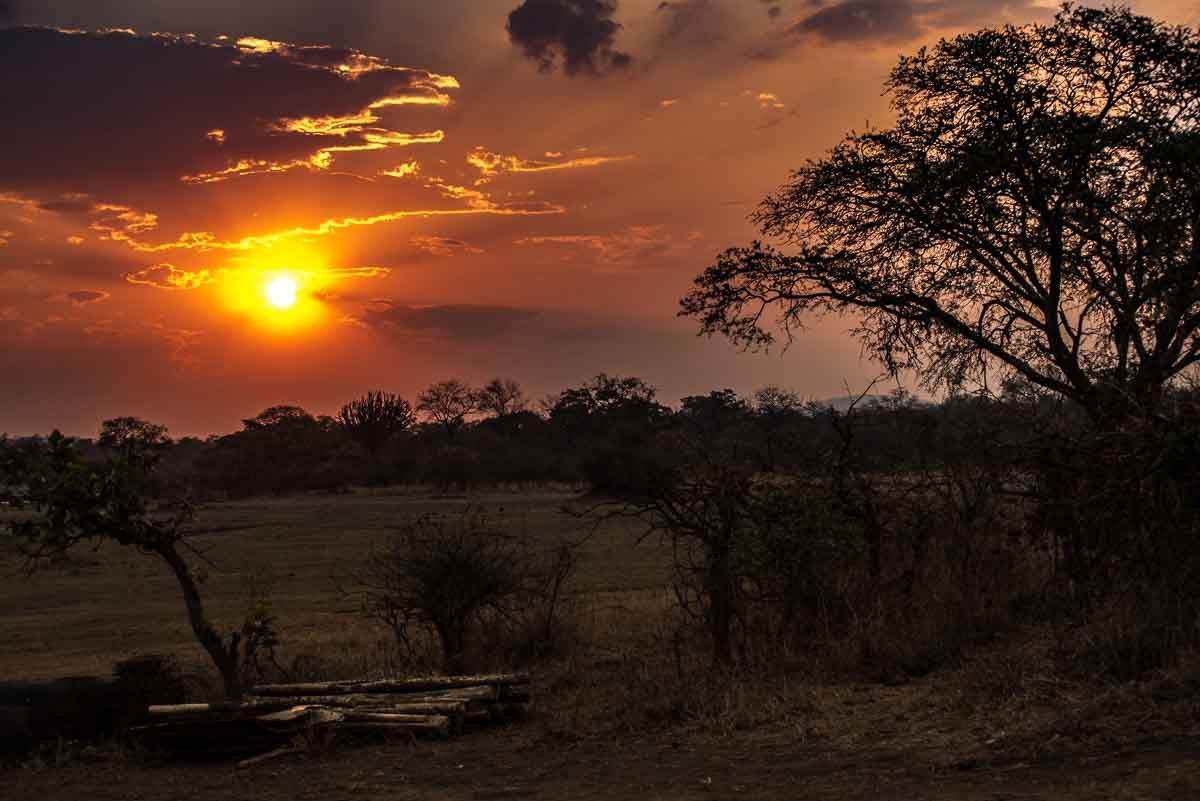 Malawi Vwaza sunset 7