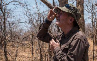 Malawi Vwaza vegetation survey bob sighting tree