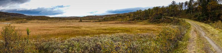 norway st olav path tundra
