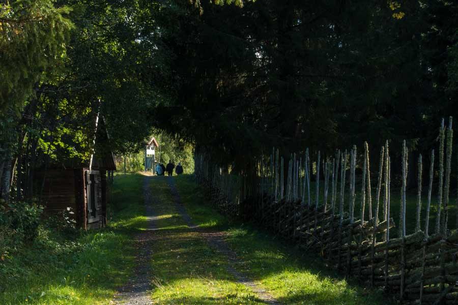 sweden st olav path 3