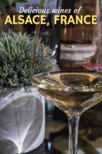 Alsace Wine tasting Rhine River Cruise France