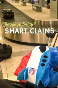 Smart claims for delayed baggage